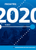 2020 in brief